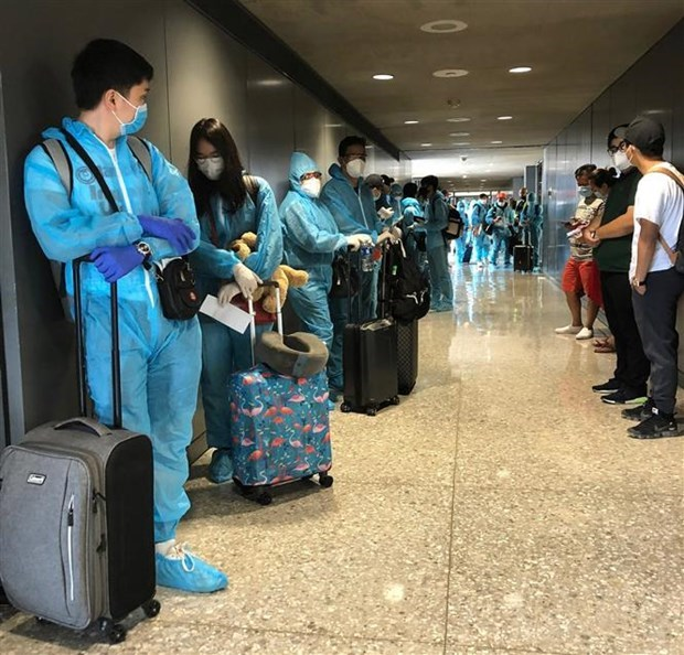 新冠肺炎疫情:越南将在美国的340余名公民接回国 hinh anh 1