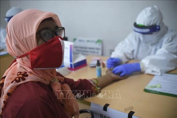 印尼投入3.39亿美元用于生产新冠肺炎疫苗 hinh anh 1