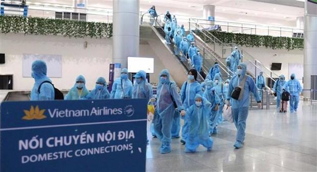 胡志明市从岘港市接回297名旅客 hinh anh 1
