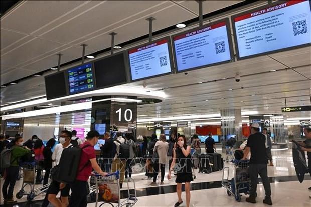 日本和新加坡一致同意从9月起放宽入境限制 hinh anh 1