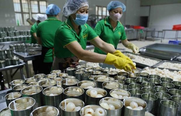 越南贸易顺差额和许多产品出口额创新纪录 hinh anh 3