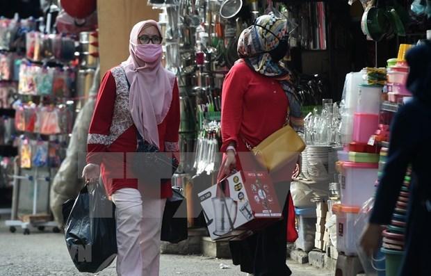 印尼2021年将推出240亿美元经济刺激计划应对疫情影响 hinh anh 1