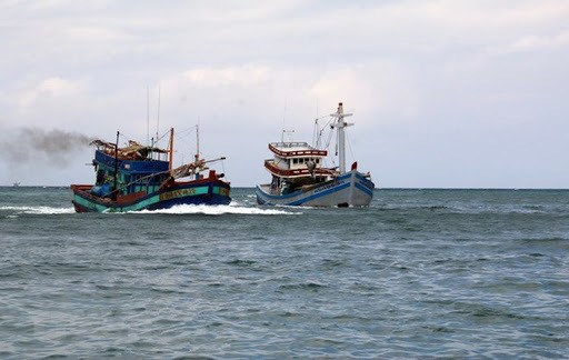 越南要求马来西亚查明真相并严厉处置执法致死一名越南渔民的执法人员 hinh anh 2