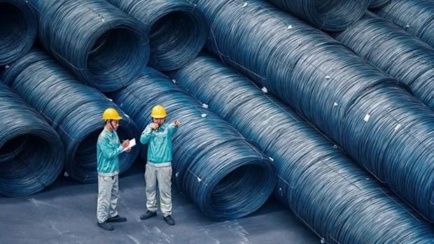 越南和发钢铁进军非洲市场 hinh anh 1