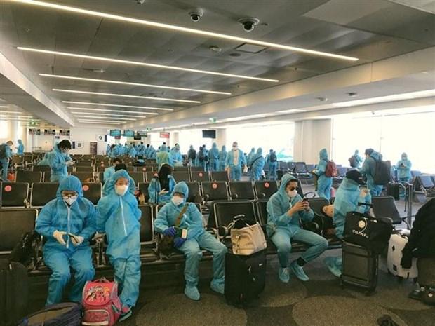 新冠肺炎疫情:340多名越南公民从澳大利亚安全回国 hinh anh 1