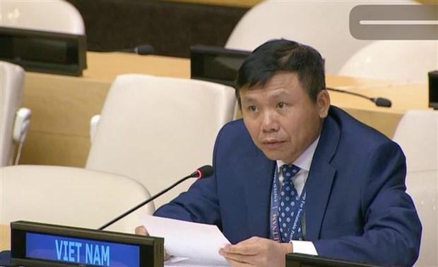 越南呼吁国际伙伴协助索马里政府减少冲突对社会经济的影响和解决人道主义问题 hinh anh 1