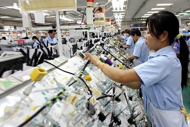 工贸部批准2019年信誉出口企业名单 hinh anh 1