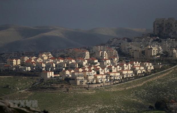 越南呼吁以色列停止扩建定居点计划 hinh anh 1