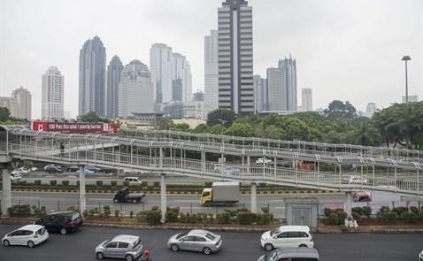 印尼加大招商引资力度促进经济复苏 hinh anh 2