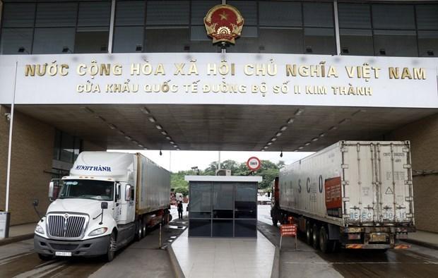 2020年前8月越南内资企业继续成为进出口活动的亮点 hinh anh 1