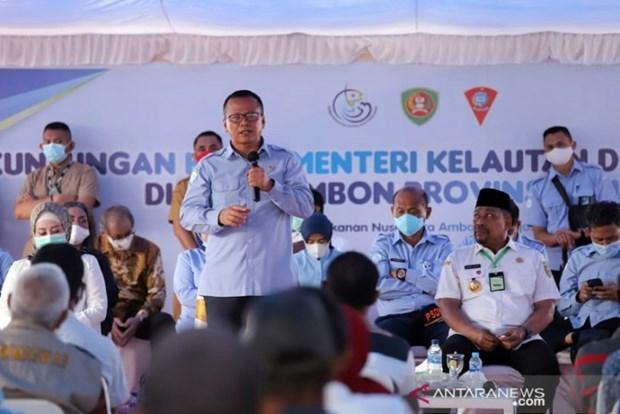 印尼再次重申消除非法捕鱼的承诺 hinh anh 1