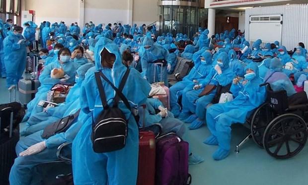 将在乌克兰滞留的240名越南公民接回国 hinh anh 1