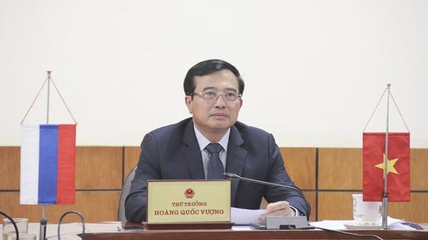 越南和俄罗斯各部门讨论新冠肺炎疫情背景下的优先投资项目开展事宜 hinh anh 2