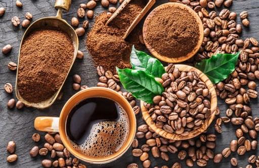 EVFTA助推越南咖啡出口 hinh anh 1