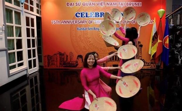 庆祝越南国庆75周年活动陆续在老挝和文莱等东南亚国家举行 hinh anh 2