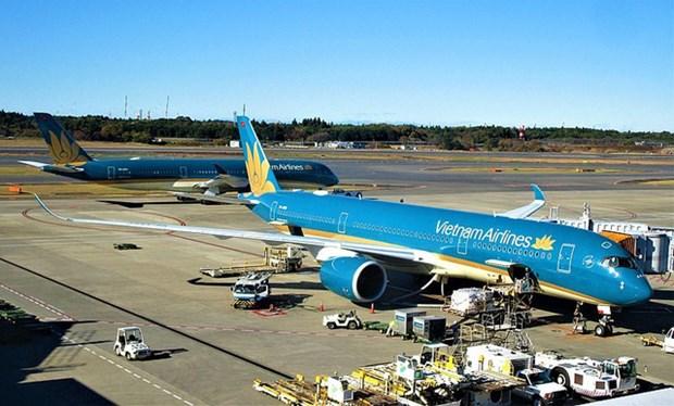 各家航空公司恢复运营至岘港往返定期航班 hinh anh 2