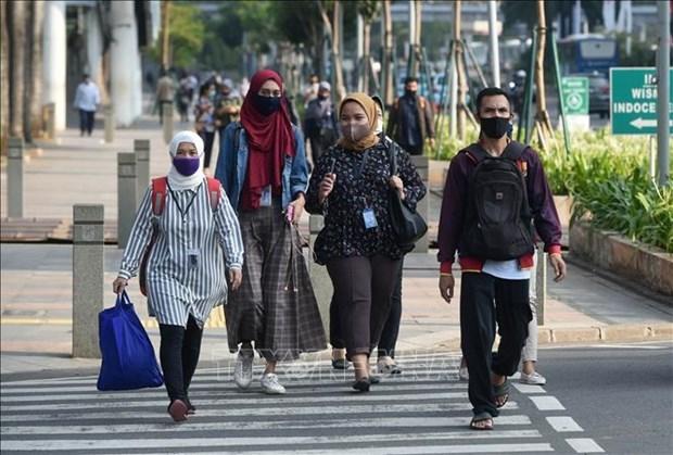 24小时内印度尼西亚新增3444例新冠病例 hinh anh 1