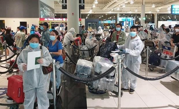 将在日本的350名越南公民接回国 hinh anh 1