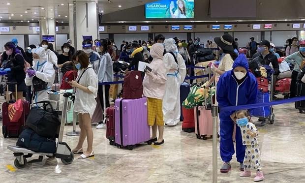 在法国、摩洛哥和智利的近280名越南公民被接送回国 hinh anh 1