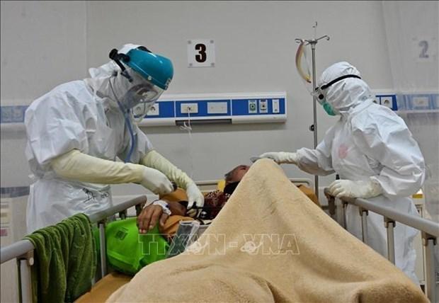 印度尼西亚和菲律宾单日新增病例超过3000例 hinh anh 1