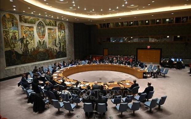 越南与联合国安理会:越南呼吁保护发生武装冲突各国的人民 hinh anh 1
