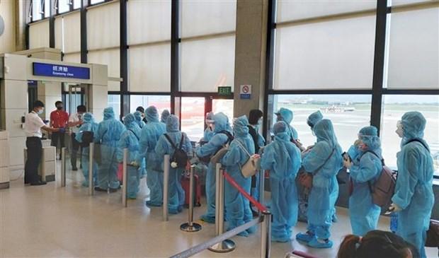 越南将在中国台湾的230名公民接回国 hinh anh 1