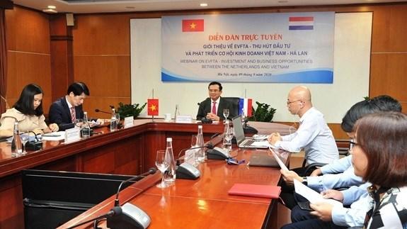 EVFTA给越南与荷兰经贸合作带来商机 hinh anh 1