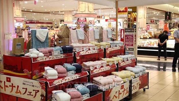 越南货展销会在日本永旺超市系统举行 hinh anh 1