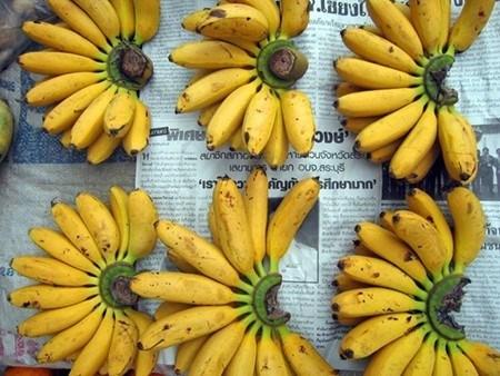 香蕉是老挝向中国出口的主要产品之一 hinh anh 1