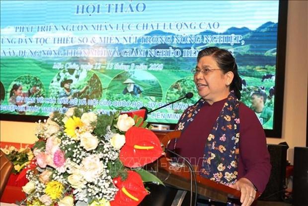 加快少数民族地区、山区优质人力资源开发 hinh anh 1