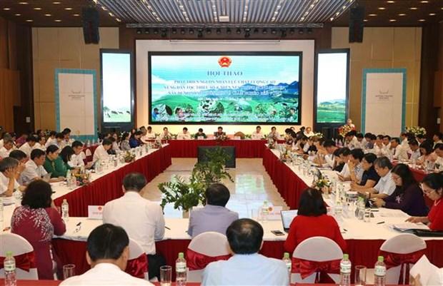 加快少数民族地区、山区优质人力资源开发 hinh anh 2