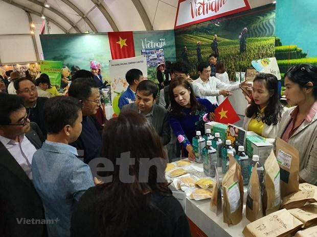 越南企业参加阿尔及利亚在线国际贸易博览会 hinh anh 1