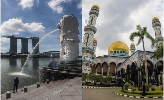 新加坡与文莱承诺加强防务合作 hinh anh 1