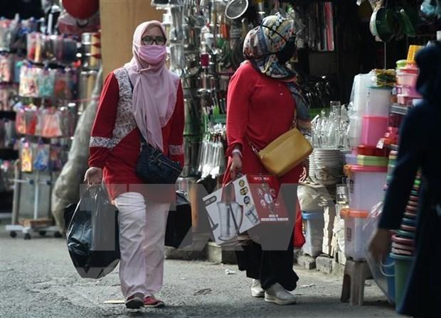 2020年8月印尼外贸顺差23.3亿美元 hinh anh 1
