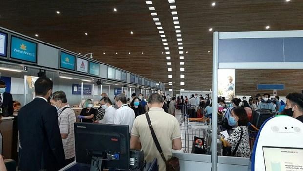 将近280名越南公民从欧洲接回国 hinh anh 1