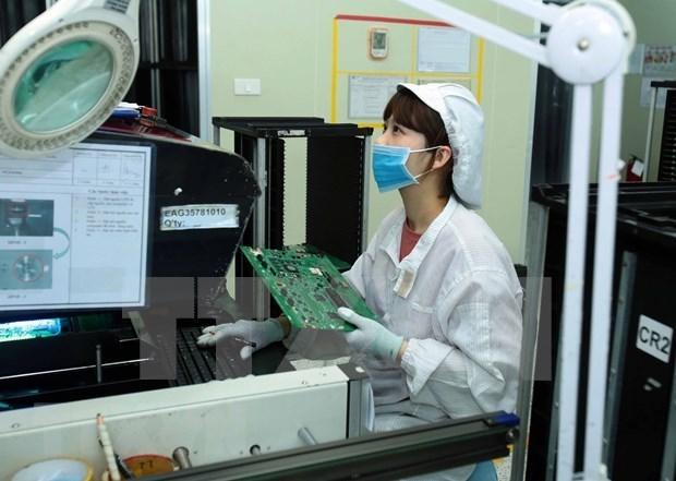 越南印度贸易恢复增长 hinh anh 1