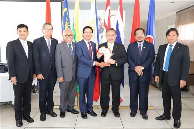 东南亚各国驻南非大使高度评价越南的作用 hinh anh 2
