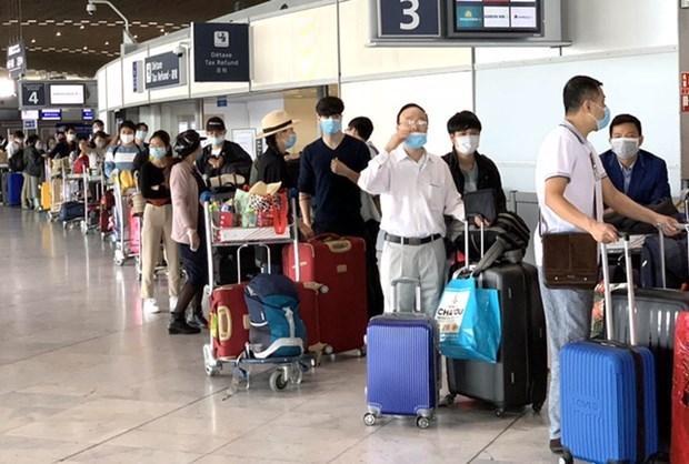 将在欧洲、非洲、南美和以色列等国家和地区滞留的越南公民接回国 hinh anh 1