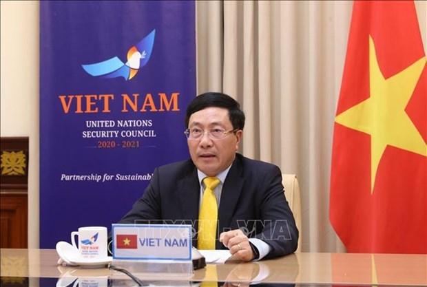越南政府副总理兼外长范平明出席联合国安理会视频首脑会议 hinh anh 1