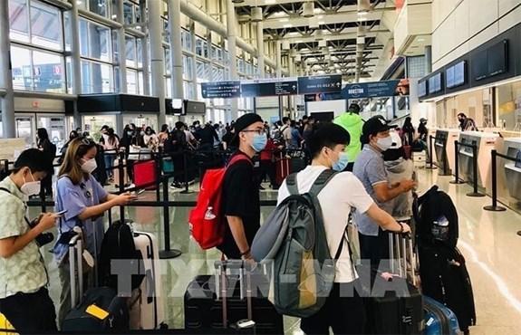 将在日本滞留的350多名公民接回国 hinh anh 1