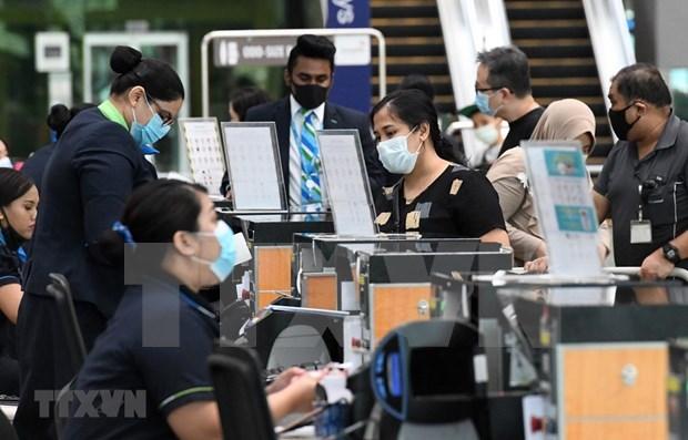 新加坡允许越南和澳大利亚游客入境 hinh anh 1