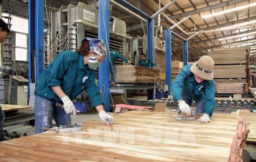 越南木制品对加拿大市场出口前景乐观 hinh anh 1