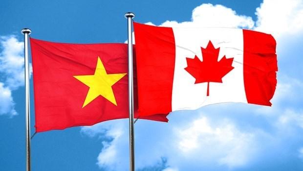 加拿大强调与越南建立的牢固商业关系 hinh anh 1