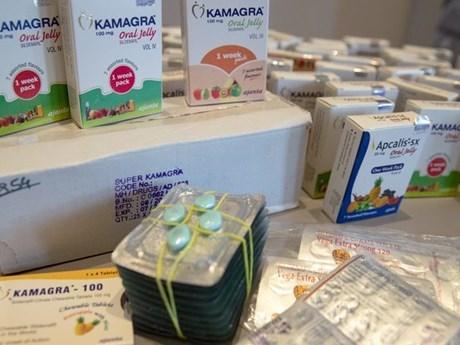 欧盟与东南亚各国开展药品防伪领域合作 hinh anh 1