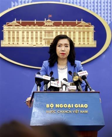 越南欢迎各国在东海问题上符合国际法的立场 hinh anh 1