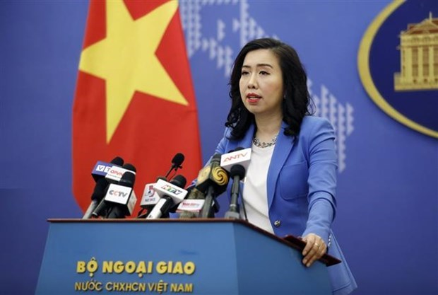越南外交部发言人:为越南公民和新加坡公民入境创造便利条件 hinh anh 1