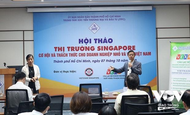 新加坡——越南中小企业走向世界的桥梁 hinh anh 1