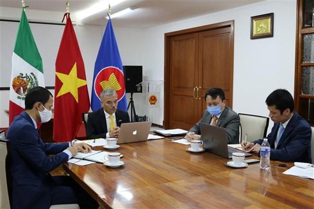 越南与墨西哥加强CPTPP框架下的贸易促进活动 hinh anh 1