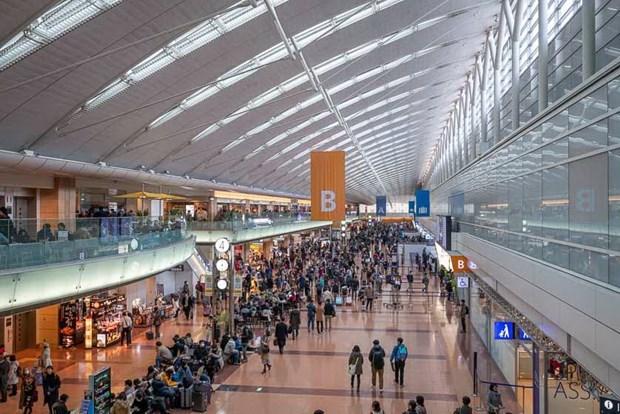 日本和越南拟恢复短期商务旅行 hinh anh 1