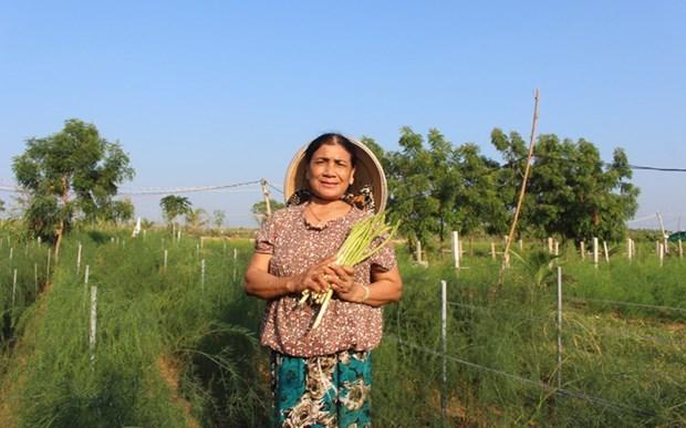 授予妇女经济权能,促进农业可持续发展 hinh anh 2